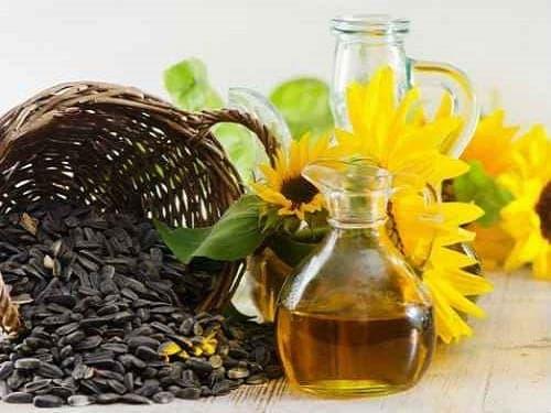 Sunflower Carrier Oil