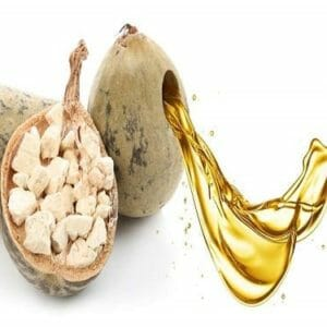 Baobab Carrier Oil