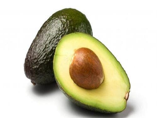 Avacado Carrier Oil