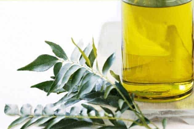 Curry Leaf Essential Oil