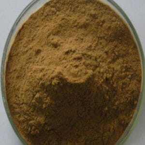 Tribulus Terrestris Extract Powder 40% Saponins