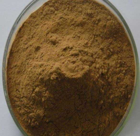 Tribulus Terrestris Extract Powder 40% Saponins