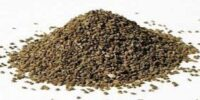 Ajowan Seed Oleoresin