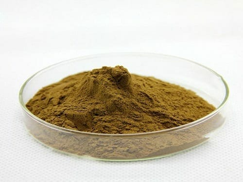 Bacopa Monnieri Extract Powder